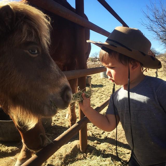 Little horse. Little man. #ohluka by malimish_marlene