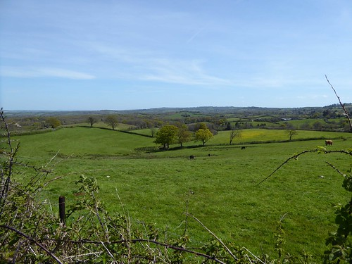 Halstock Vale