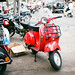 The Scooterist (1)