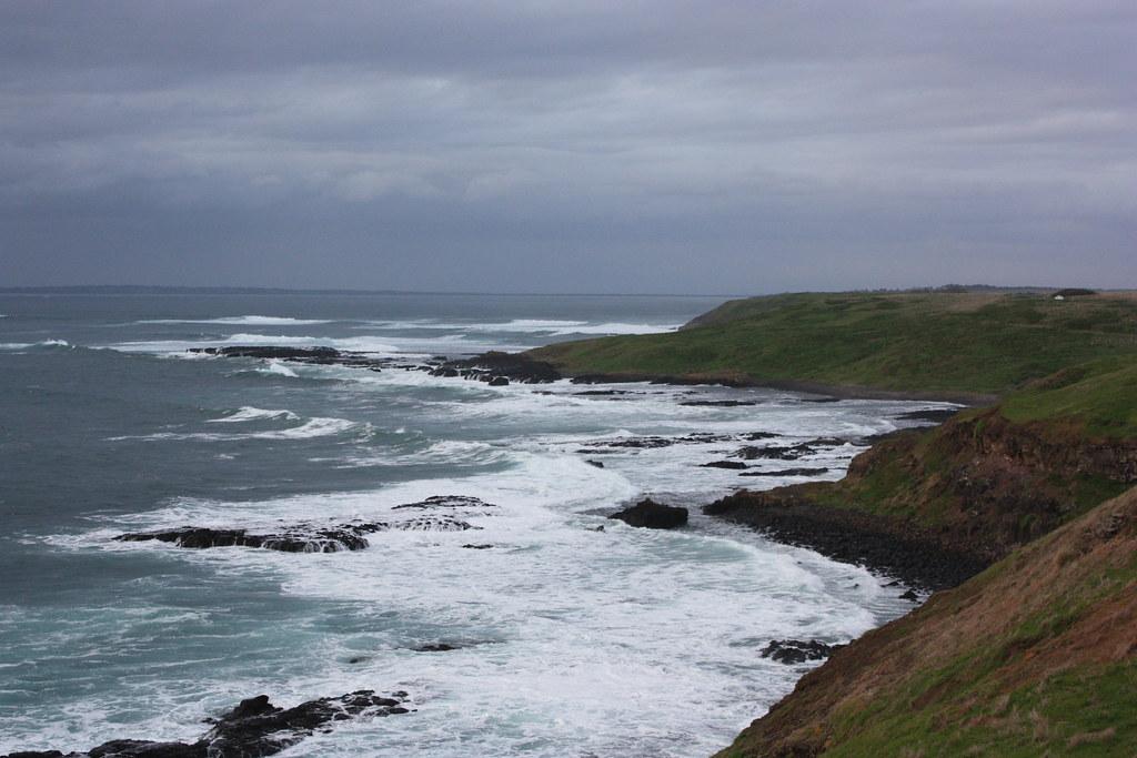 Pphillip Island Penguin Tour