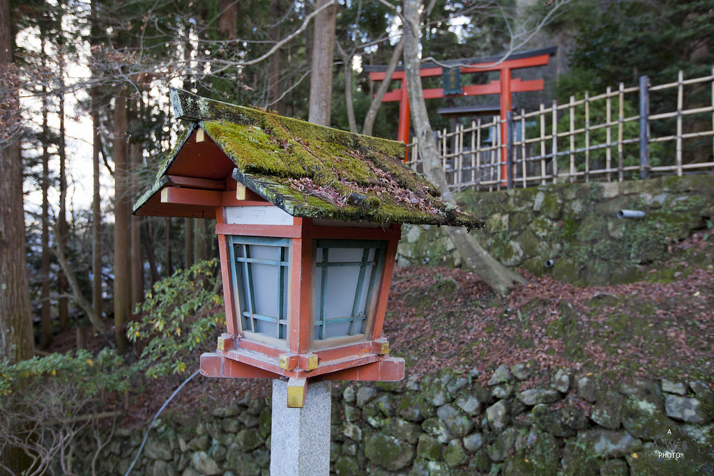 Lanterns along the stairs to Horin-ji