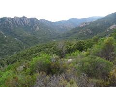Sous Punta Piscia : la vallée de l'Osu en amont