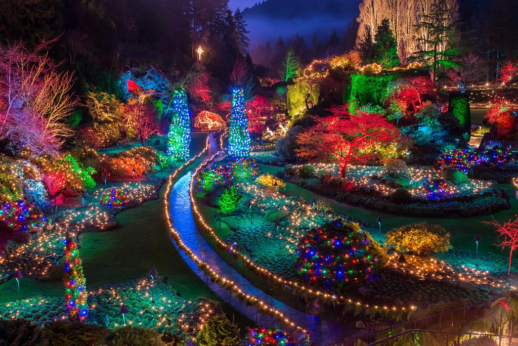 White Lights Christmas
