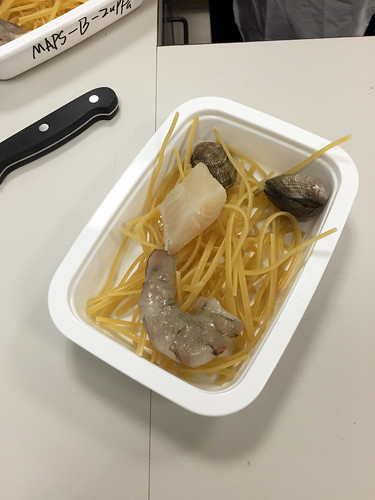 Seafood fettuccini before processing with microwave assisted pasteurization systems