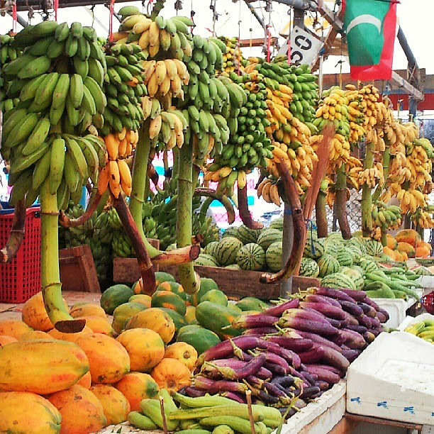 local #market #banana #brinjal #papaya #watermelon #Maldi… | Flickr Papaya