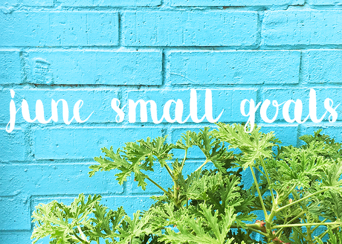 small goals june