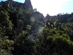 Après la crête de Quarciteddu : sur la crête, vue vers l'aiguille 852m et la suite du chemin