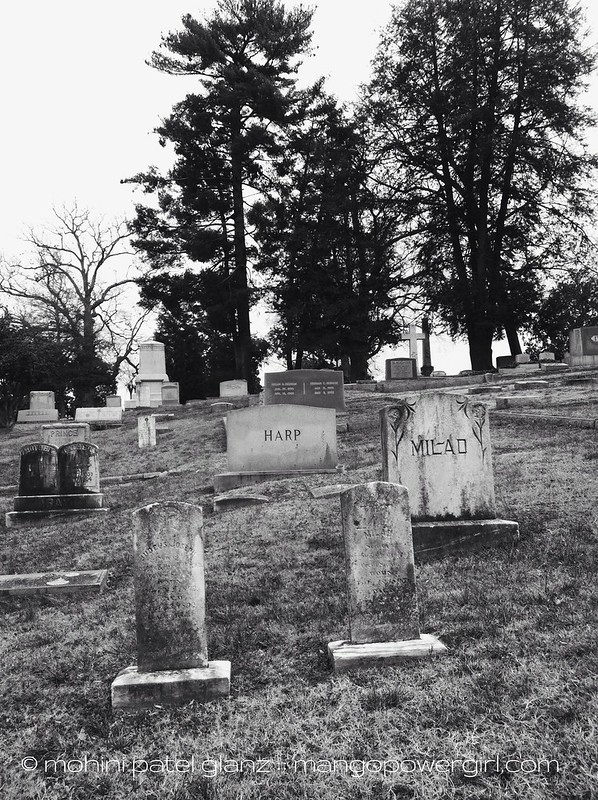 historic oakwood cemetery 2