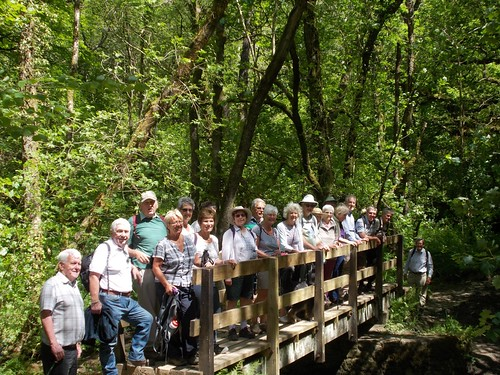 Lostwithiel U3A  Walk 31 May 2016