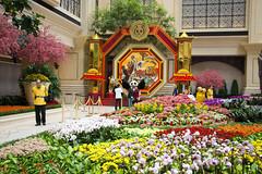 Macau - LCA14