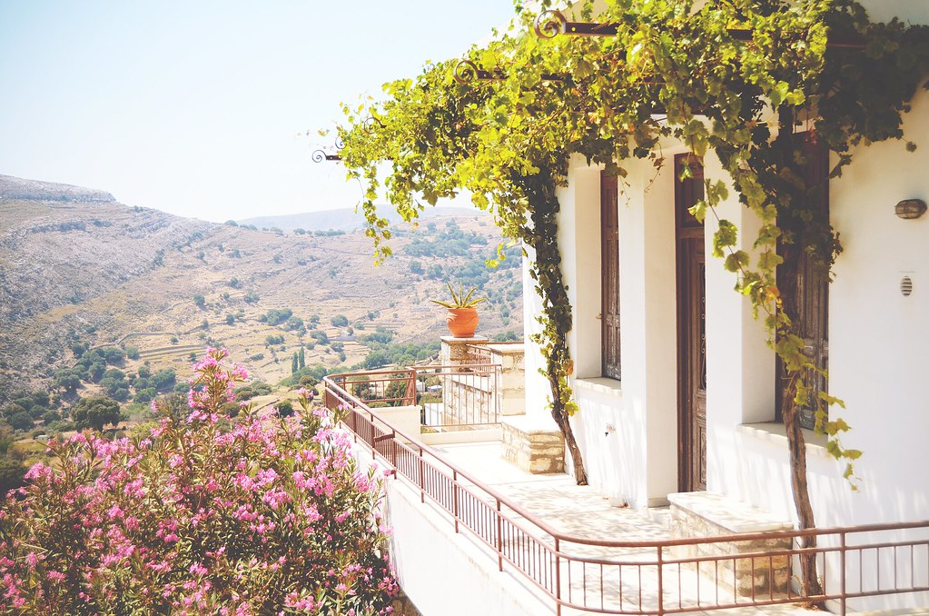 Grapevines grow everywhere in Naxos, Greece | via It's Travel O'Clock