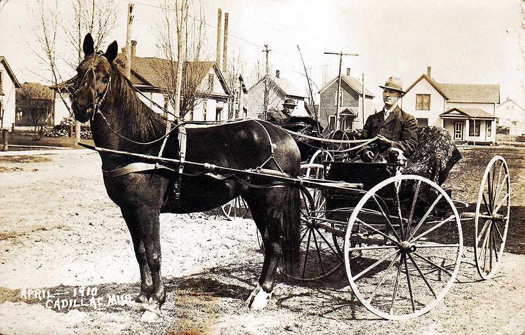 Horse Drawn Dog Cart For Sale