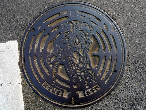 Takahama Aichi, manhole cover (愛知県高浜市のマンホール)