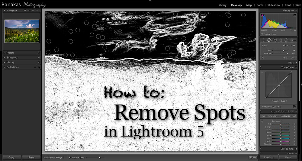 Light Room Remove Spots From Photos