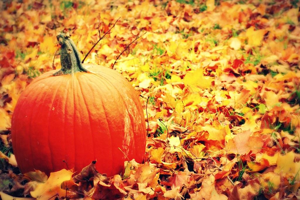 thanksgiving events in roanoke va