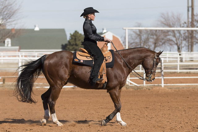 Oklahoma State Vs Kansas State Equestrian Event Saturday