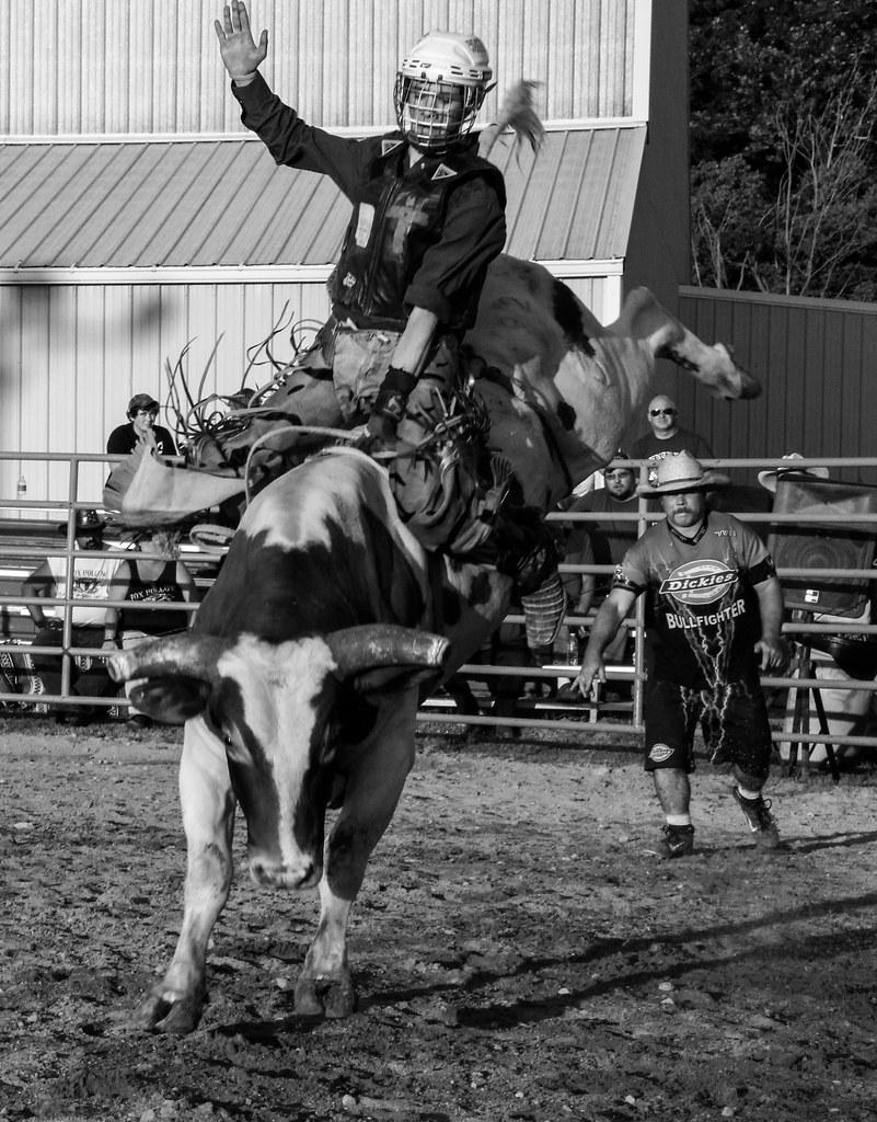 Bull Rider Fox Hollow Rodeo Waynesville Ohio I Think