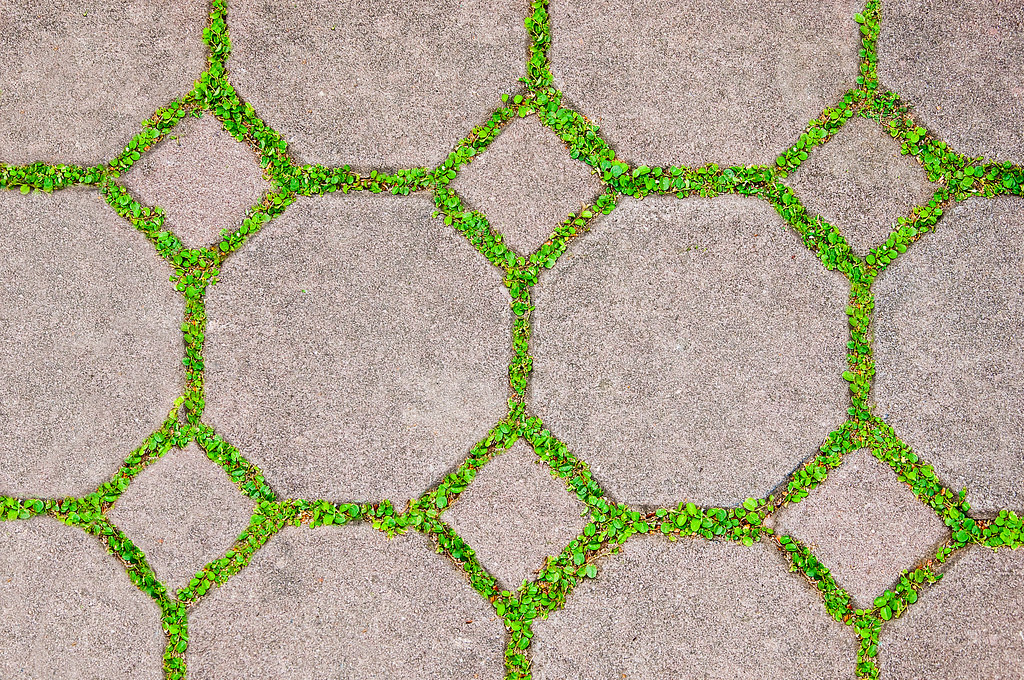 The Cement Brick Between Green Grass Background The