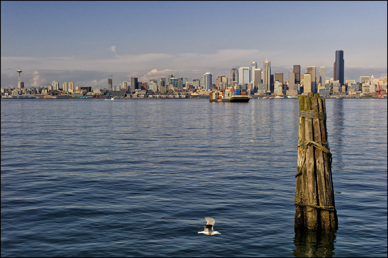 View of Downtown from West Seattle