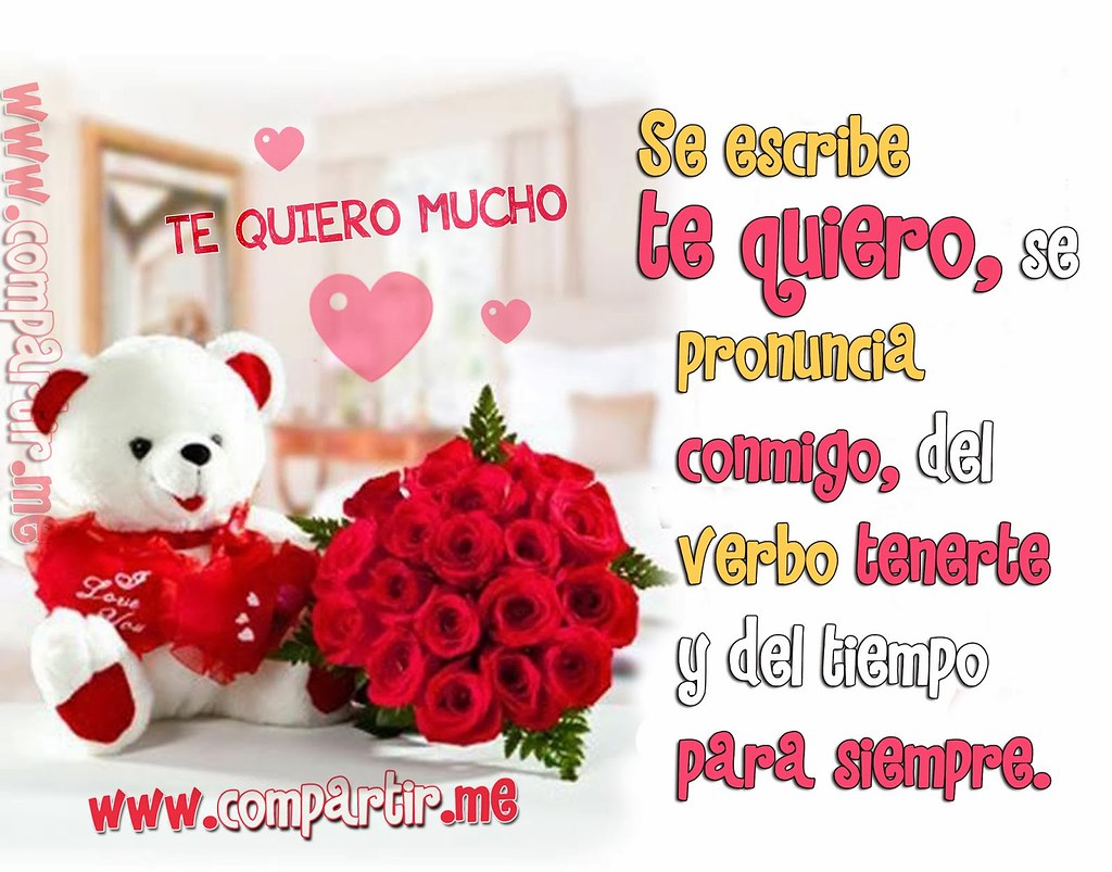 Frases De Amor Osito Tierno De Peluche Con Frase De Amor Flickr
