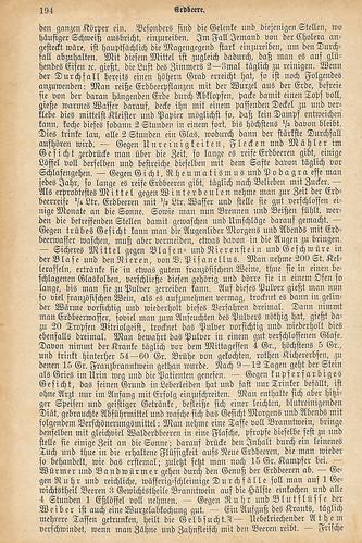 """""""Großes illustriertes Kräuterbuch"""" Ulm 1884: Heilmittel Erdbeere mit Rezepten"""