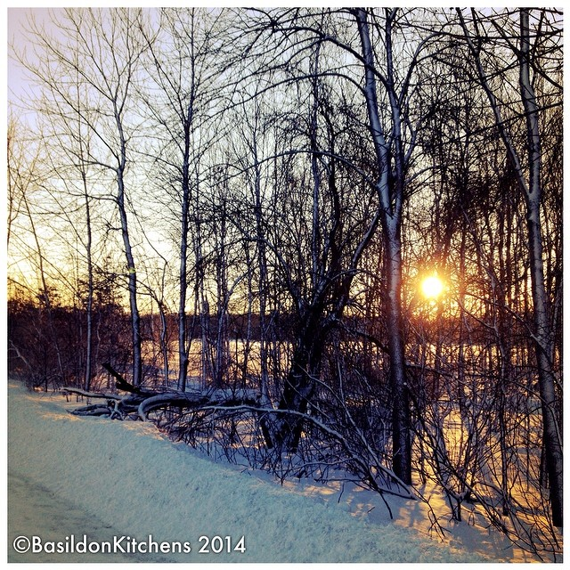 26/2/2014 - light {I love early morning light}. Here is this morning's sunrise. #fmsphotoaday #light #sunrise #princeedwardcounty #millerroad #rural #trees #sideroad #winter
