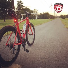 red madone