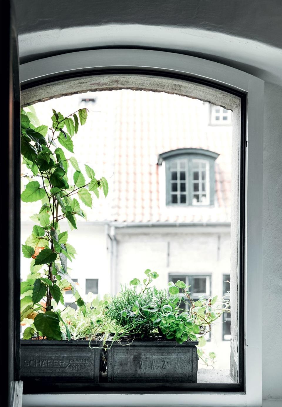 06-jardineras-minihuerto
