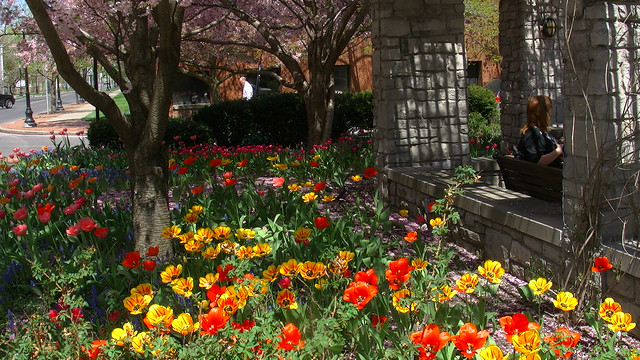 Franklin Square In Bloom 5 2 2013 Flickr Photo Sharing