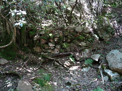 Une carbonara en RD du Carciara