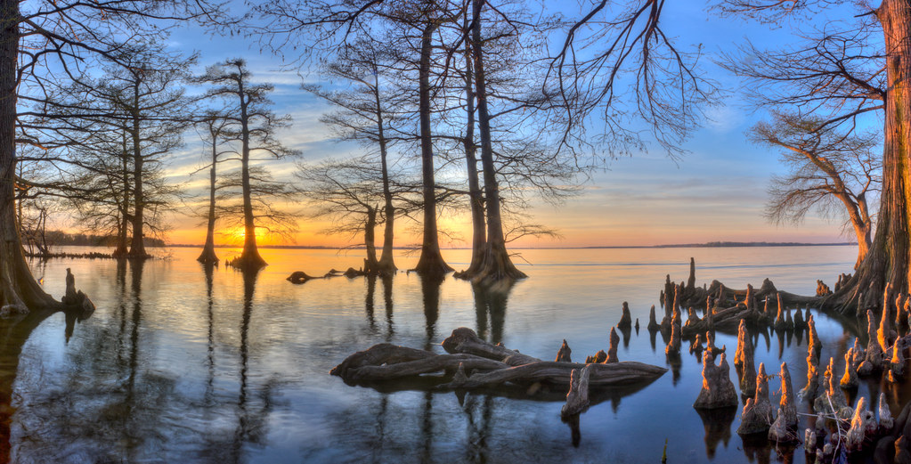 Sunset 2 reelfoot lake state park lake county tennessee for Reelfoot fishing report