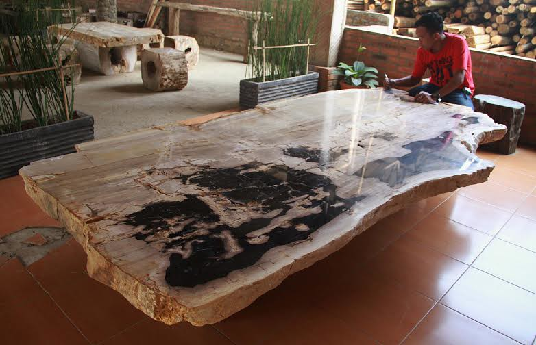 Petrified Wood Dining Table Our Petrified Wood Fossils