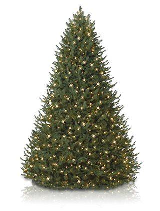 9 39 bh balsam fir artificial christmas tree unlit discount flickr photo sharing. Black Bedroom Furniture Sets. Home Design Ideas