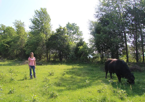 Cassie Munsey with her bull on her cattle farm