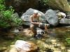Déjeuner à la confluence Carciara/Frassiccia : Marie-Chantal et son chien de montagne