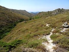 Dans la remontée le long du ruisseau de Menta : la vallée vers l'aval