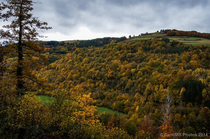 Colores del otoño cerca de Ochagavía