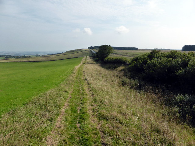 Ditch west of Limestone Corner