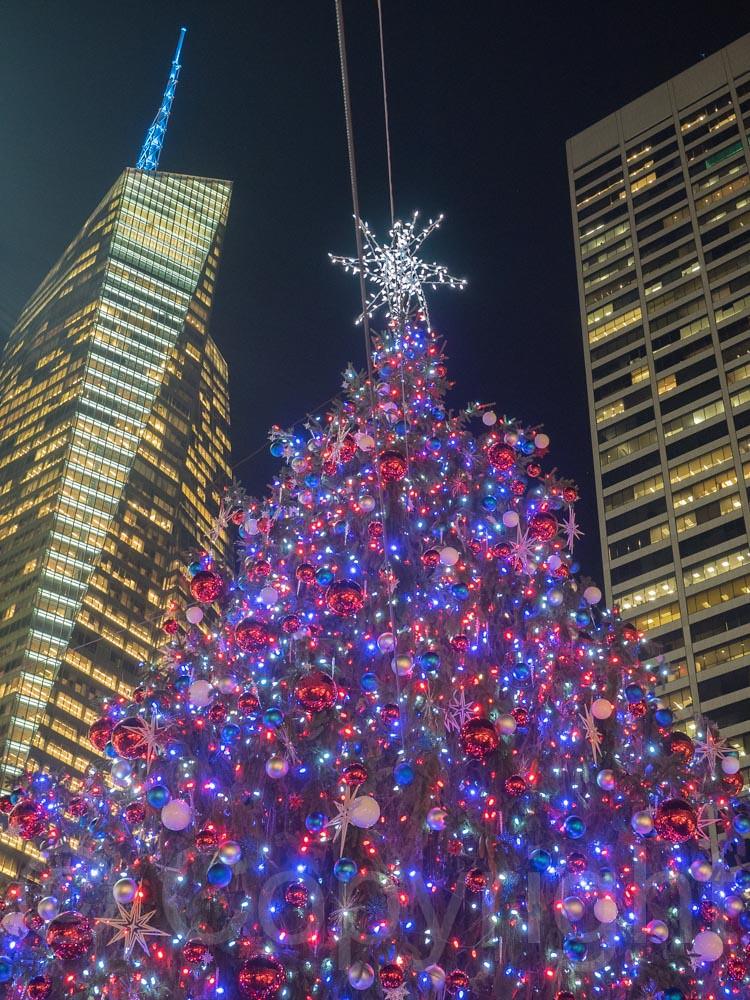 2014 Bryant Park Christmas Tree, Midtown Manhattan, New Yo… | Flickr