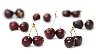 チワワが食べる時に注意が必要な果物 さくらんぼ