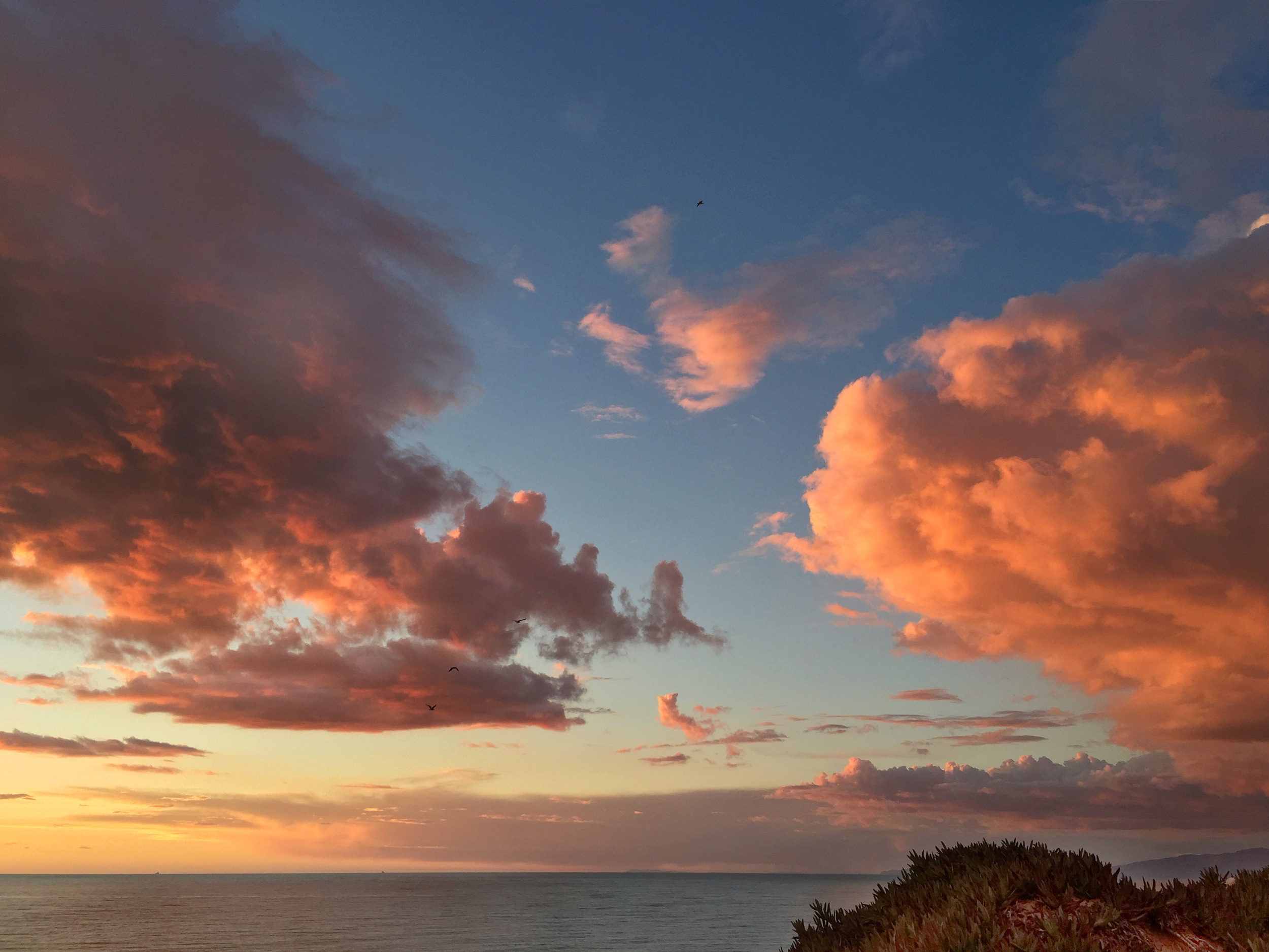 Fort Funston Sunset