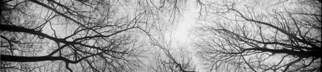 Falling Skyward 1