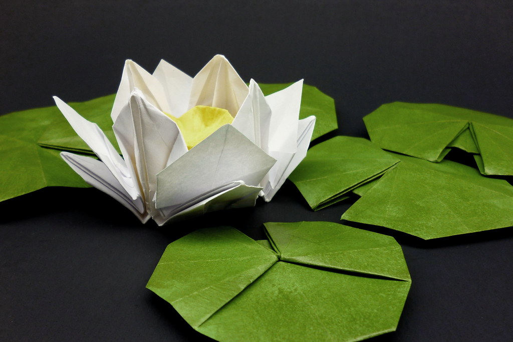 white origami water lily original design flower from