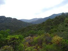 Sentier de Punta Piscia : la vallée de l'Osu