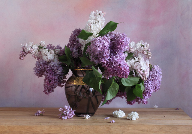 Happiness Is A Lilac