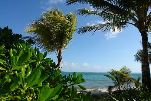 Grand Palladium Resort And Spa Riviera Maya