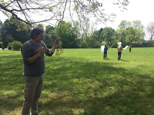 Istvan stands with aspirator, while three students walk away with sweep nets for collecting insects