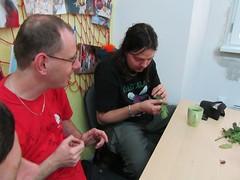 Fotogalerie na Flickru - Bylinky a jejich využití, besedy ve Znojmě