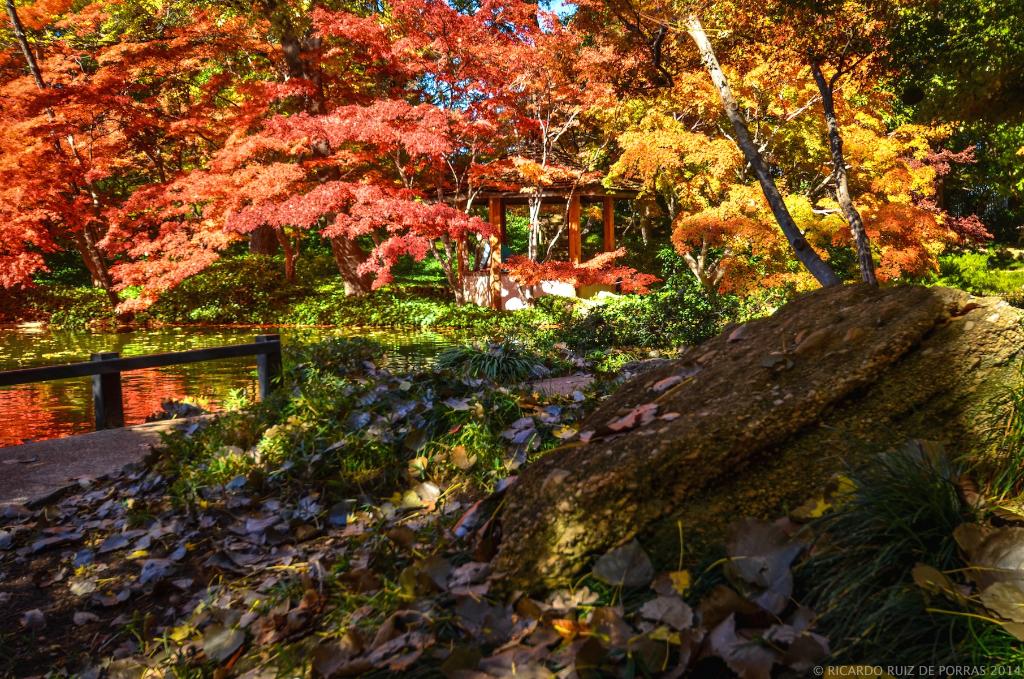 Rocky Bend Japanese Gardens Fort Worth Tx Ricardo Ruiz De Flickr