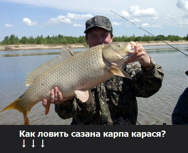 рыбалка в антраците